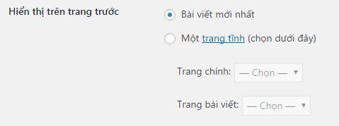 cai-dat-trang-chu-tuy-chinh