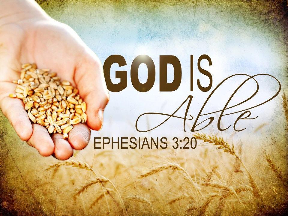 Hành trình Đức Tin Dân Thiên Chúa