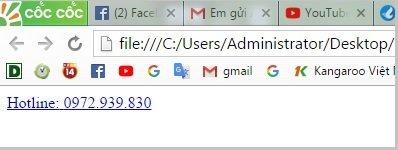T%E1%BA%A1o n%C3%BAt Hotline cho website wordpress Code chèn Hotline và chat Facebook vào chân trang trên giao diện mobile cho website