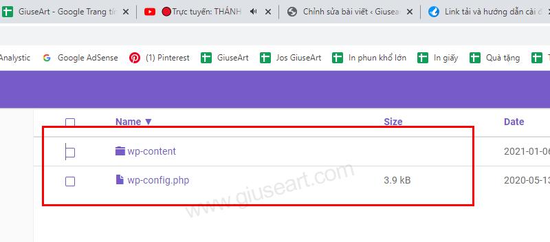 Giuseart.com---thay-core-wp